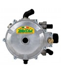 LPG Electronic Reducers
